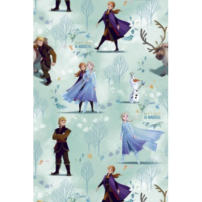Curtain for children with original Disney design Frozen